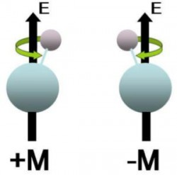 Research Highlight: Testing the Standard Model in a Single Molecule